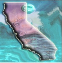 CALIFORNIA DREAMIN' ~ Sleepers' Insights on a Troubled Economy